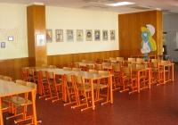 Prečo došlo k salmonelóze v školskej jedálni?